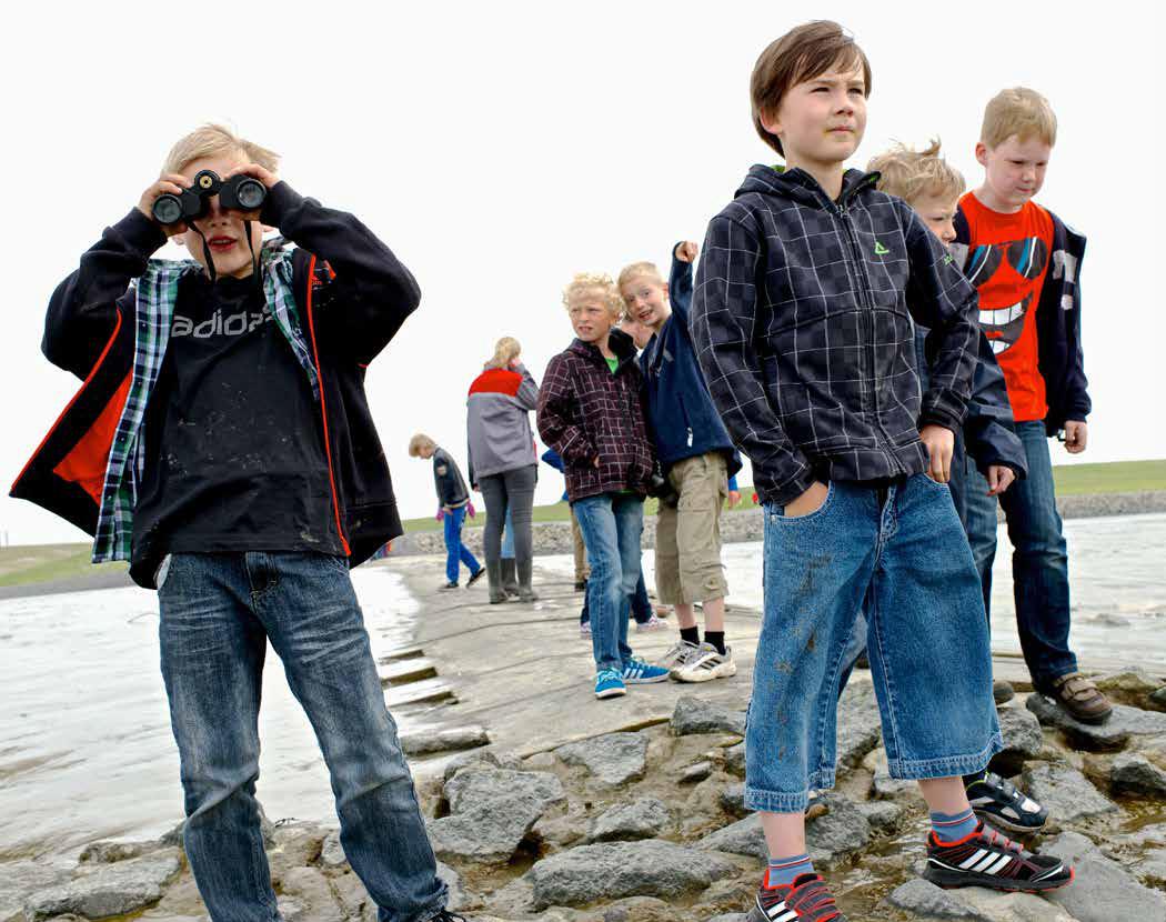Ökowerk_Bildmotiv_Umweltbildung_Kinder im Watt