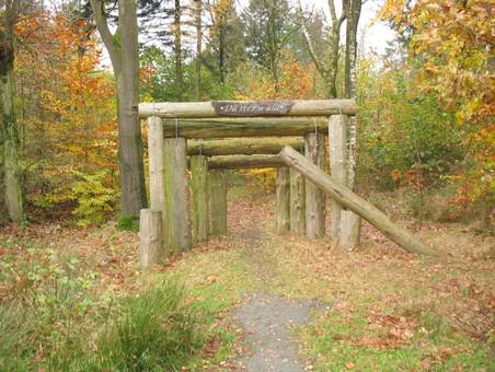 Bild vom Emder Stadtwald
