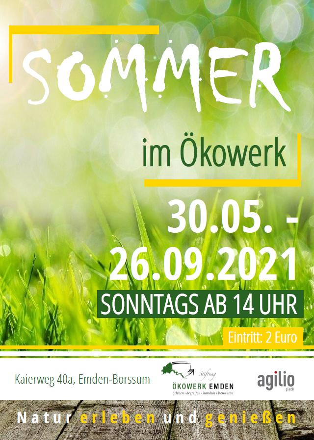 Sommer im Ökowerk