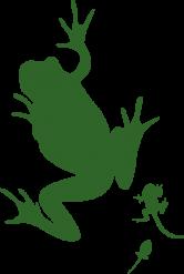 frosch_dunkel